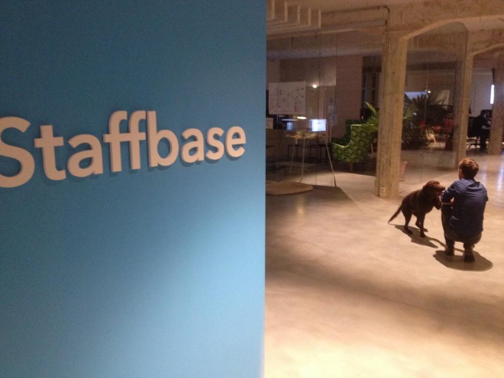 Silicon Valley von Chemnitz: Die Softwareschmiede Staffbase setzt auf tierischen Beistand. Wichtiger aber: Sie hat eine App entwickelt, mit der auch Beschäftigte erreicht werden können, die keinen PC-Arbeitsplatz haben. Foto: Michael Kunze